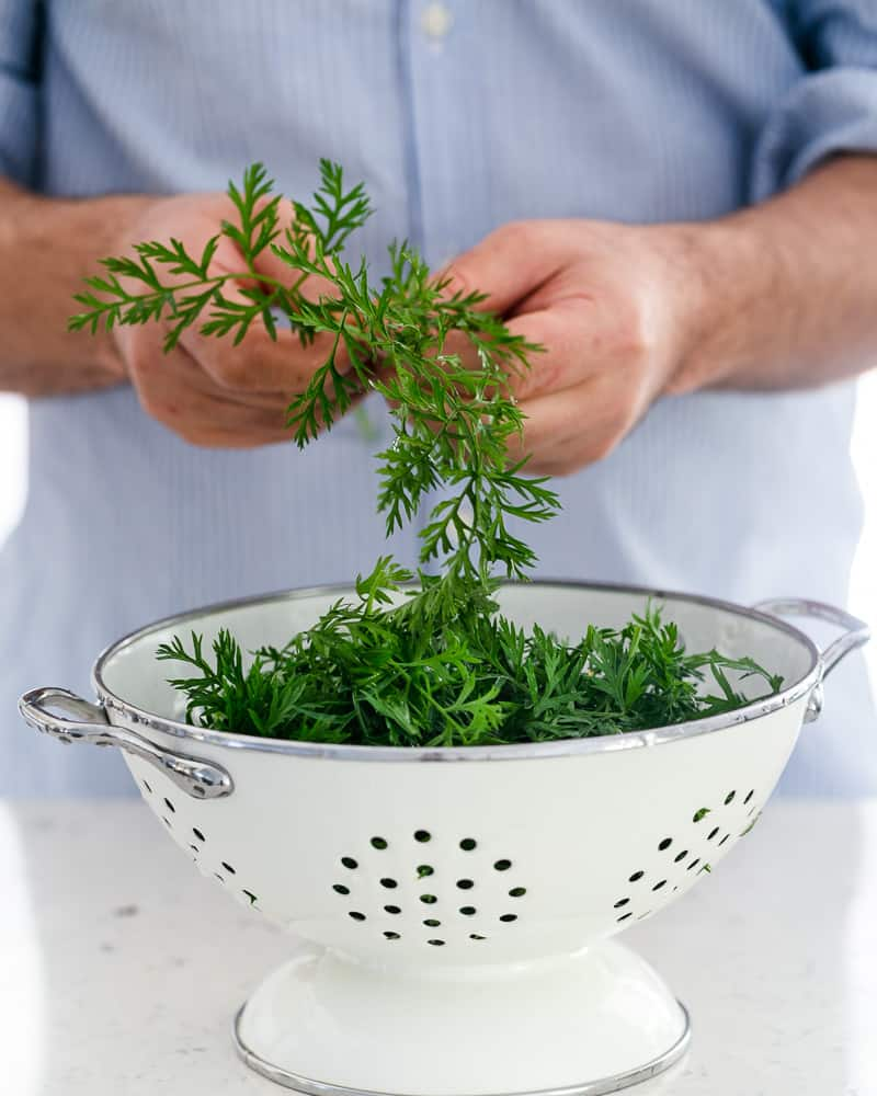 plucked greens from baby carrots