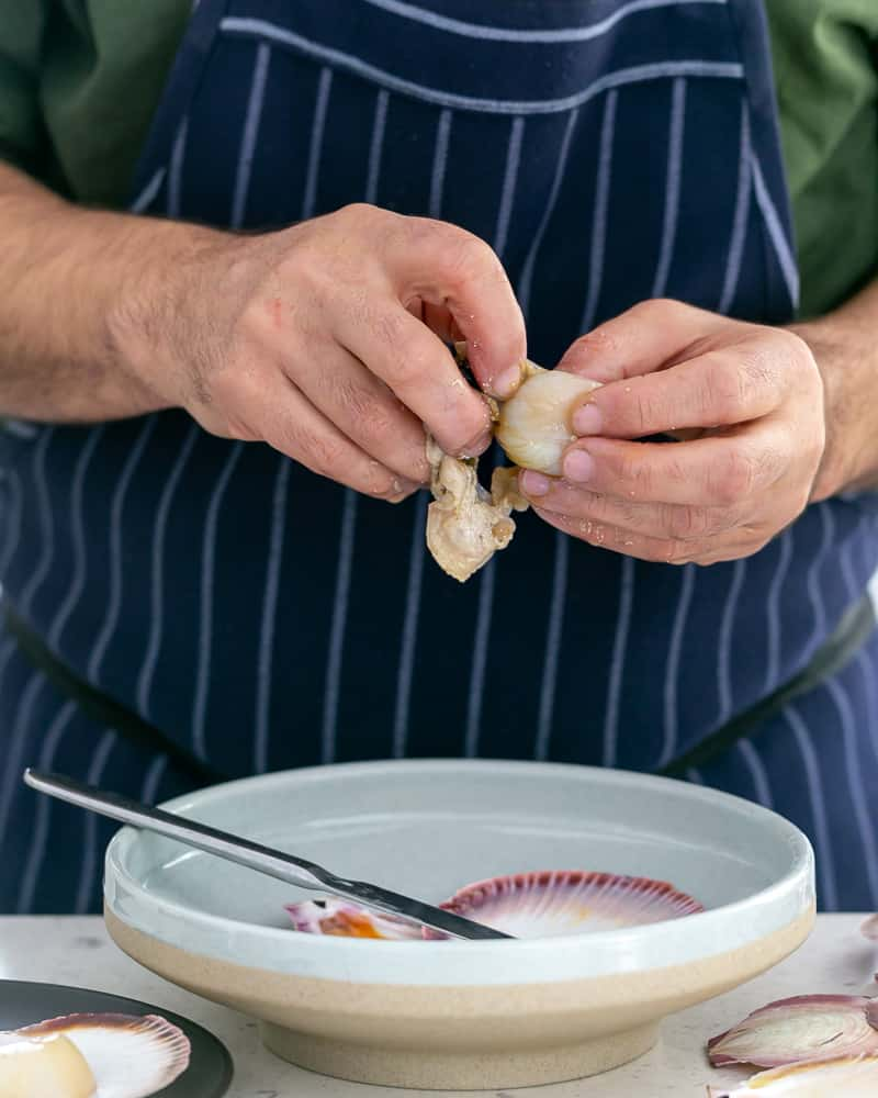 How to clean a fresh scallop in shell
