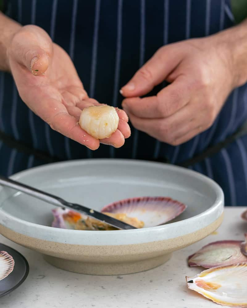 Freshly shucked and cleaned scallop